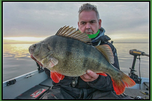 Rob-big-perch-Guided-Holland