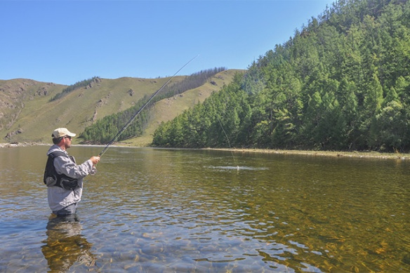 FLY FISHING ACTION, MONGOLIA